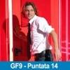 gf9_p14cover