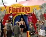 La banda Olsen al circo