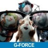 cover_gforce