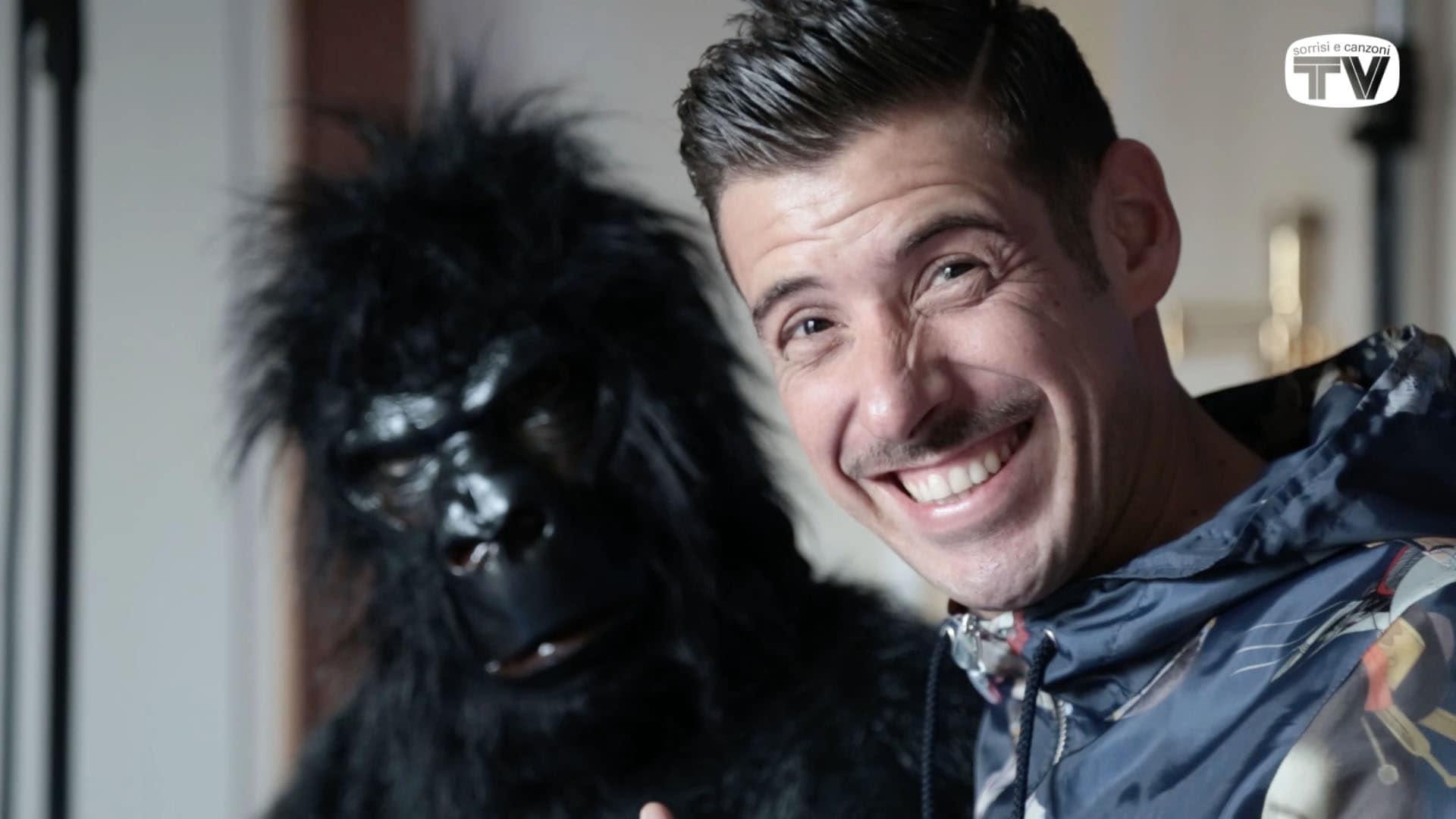 francesco gabbani porto la scimmia all 39 eurovision song